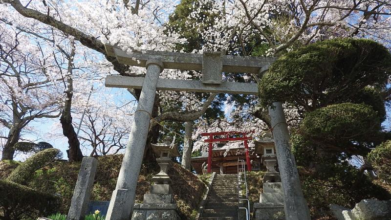 三春滝桜神社