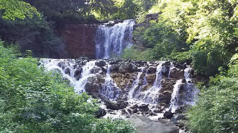 チャツボミゴケ公園滝2