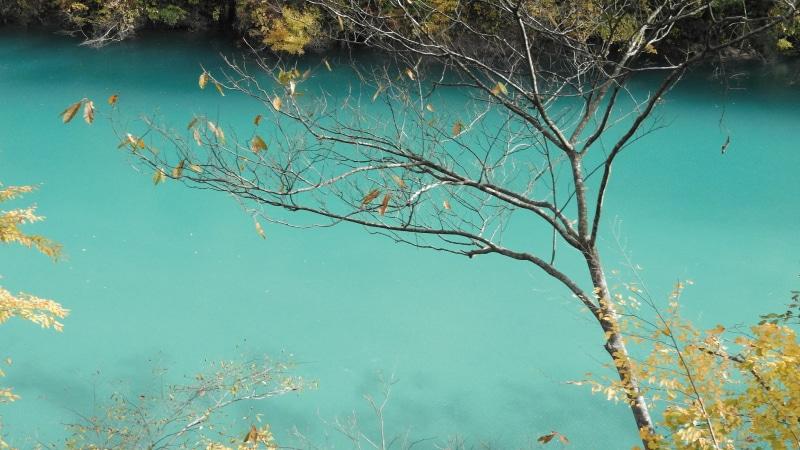 黒部峡谷トロッコ鐘釣付近エメラルド