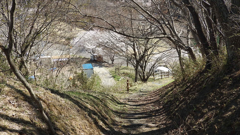 三春滝桜眺めの丘階段