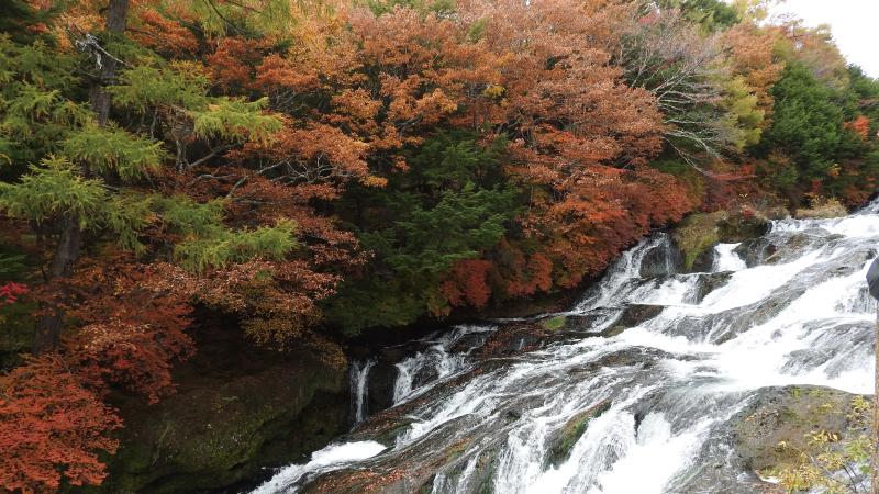 竜頭の滝散策1