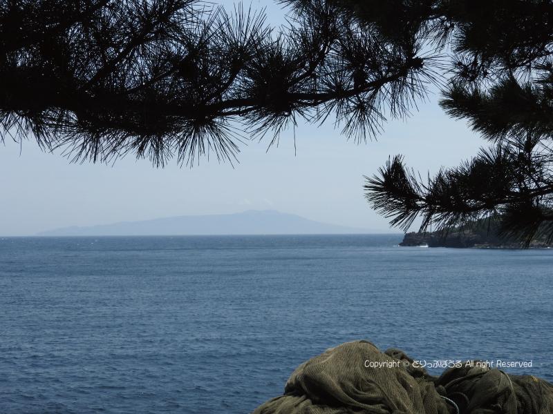 富戸から伊豆大島
