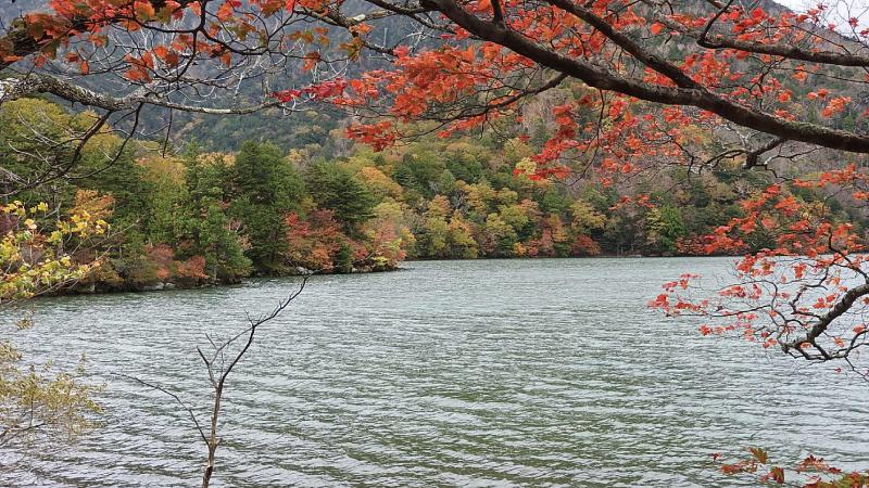 湯ノ湖と紅葉