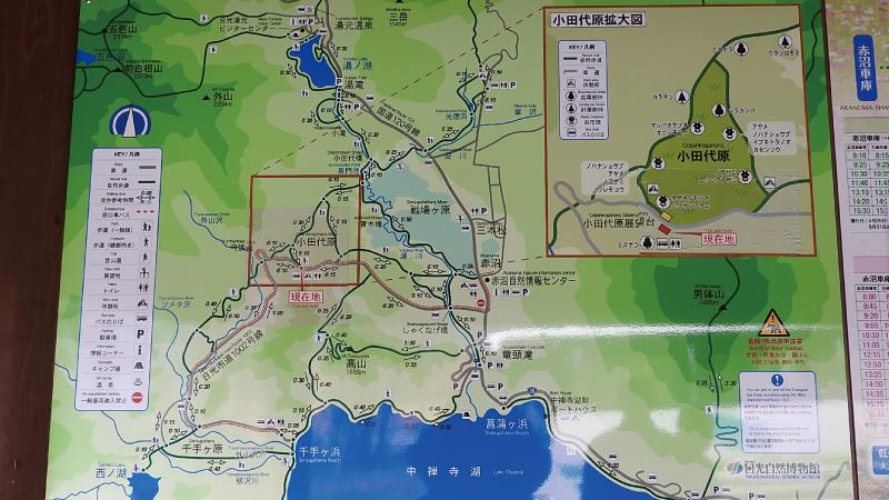 小田代原地図