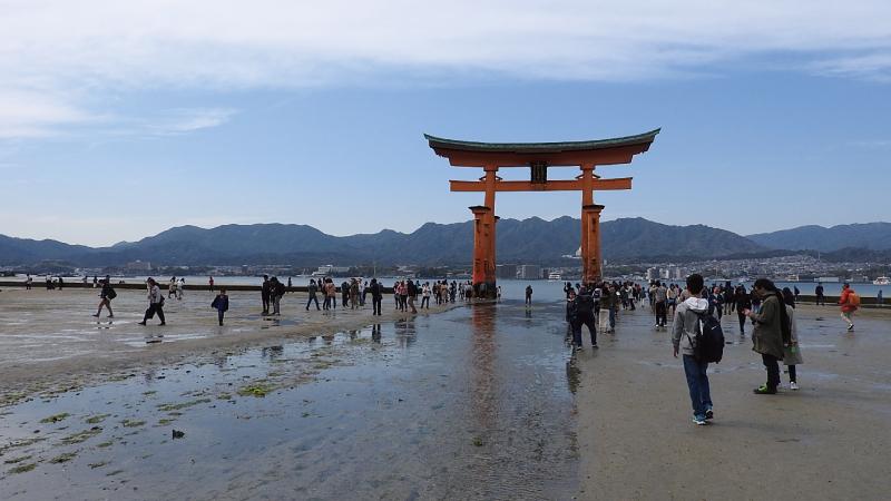水が引いた干潮の厳島神社大鳥居