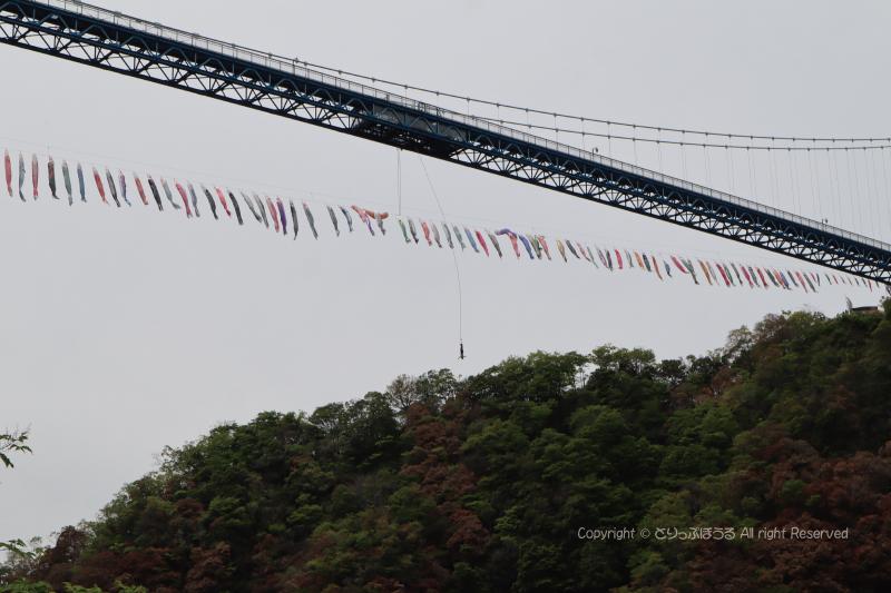 竜神大吊橋バンジージャンプ