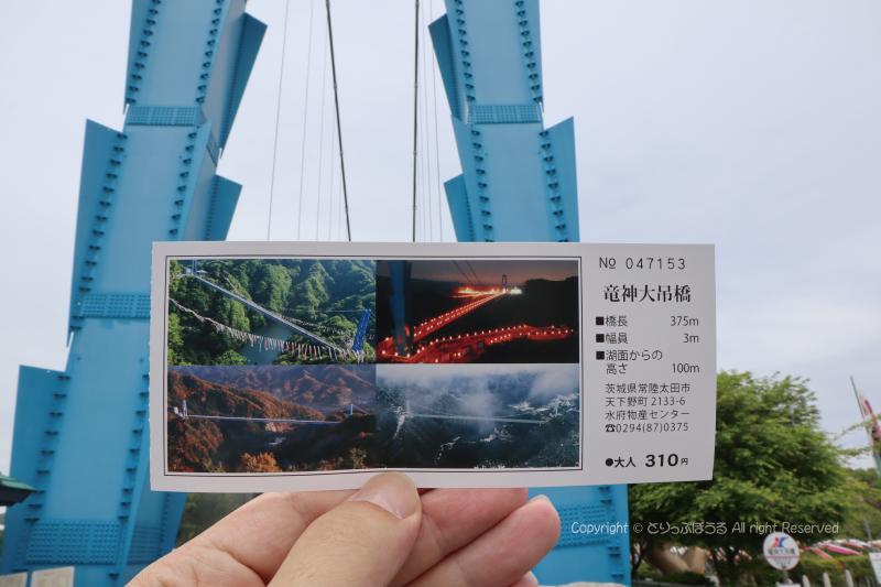竜神大吊橋チケット