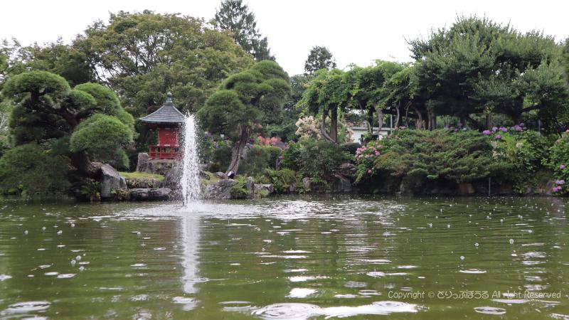 保和苑あじさいと噴水