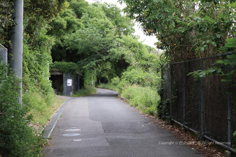 能古島山道