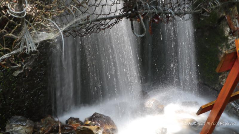 夢の吊橋ハイキングコースの湧水