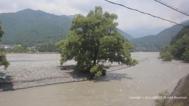 灰色の大井川