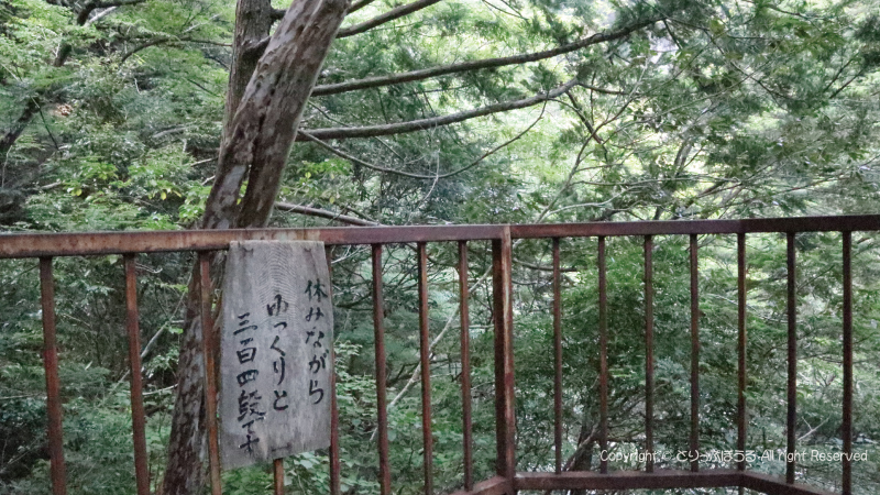夢の吊橋から尾崎展望台へ