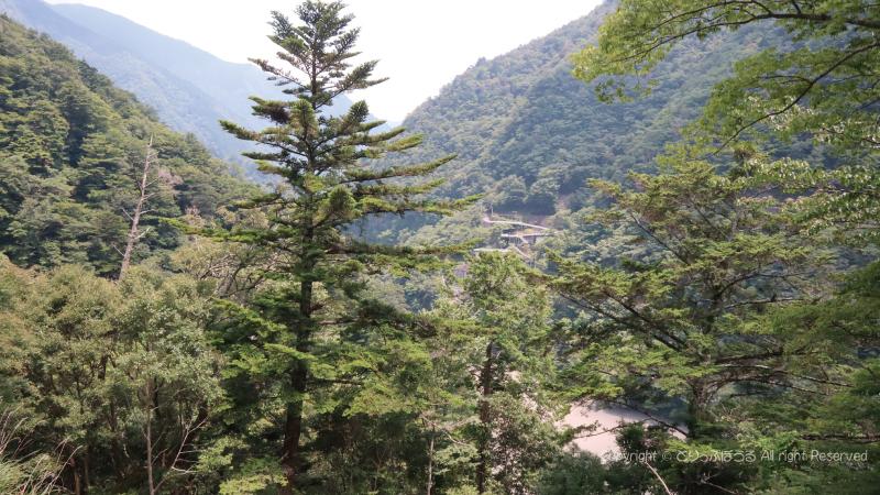 尾崎坂展望台からの眺め