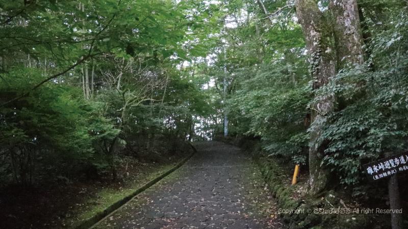 軽井沢見晴台遊歩道