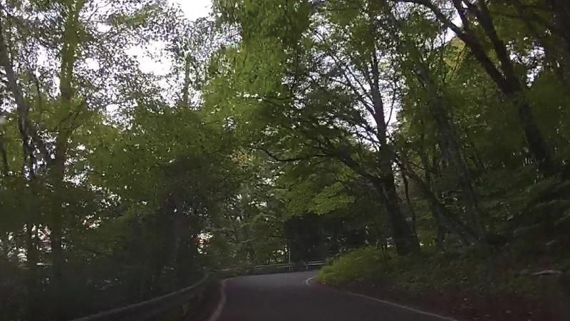 軽井沢見晴台への山道