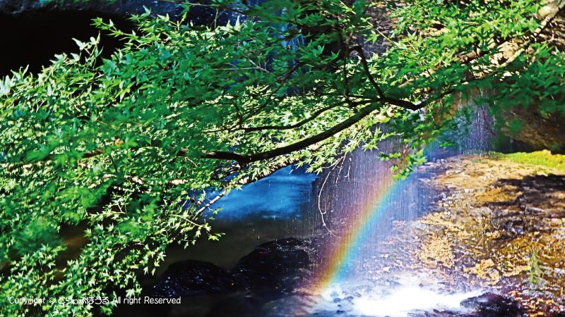 月待の滝と虹