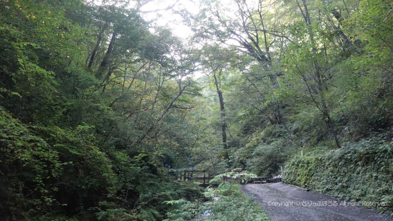 軽井沢白糸の滝遊歩道