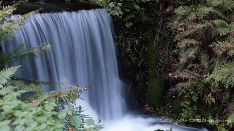 滝が絹糸のように見える写真