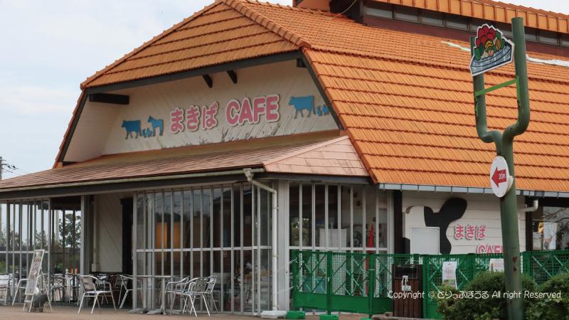 マザー牧場のまきばカフェ
