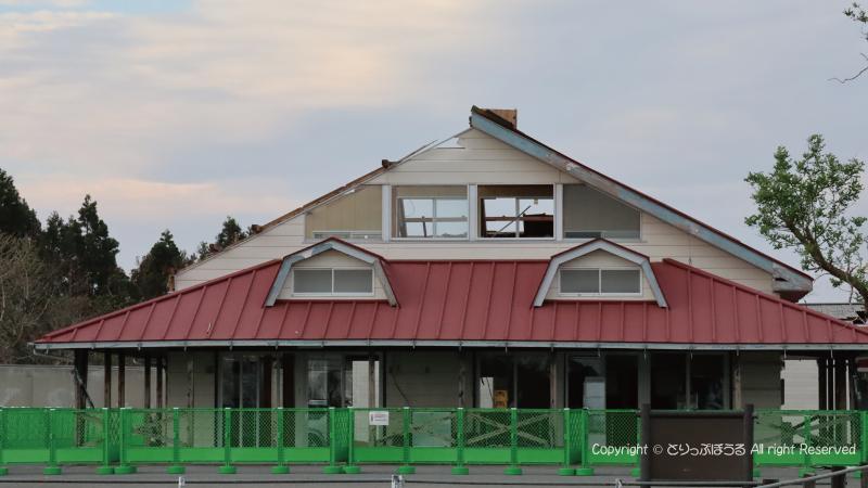 マザー牧場うしの牧場屋根
