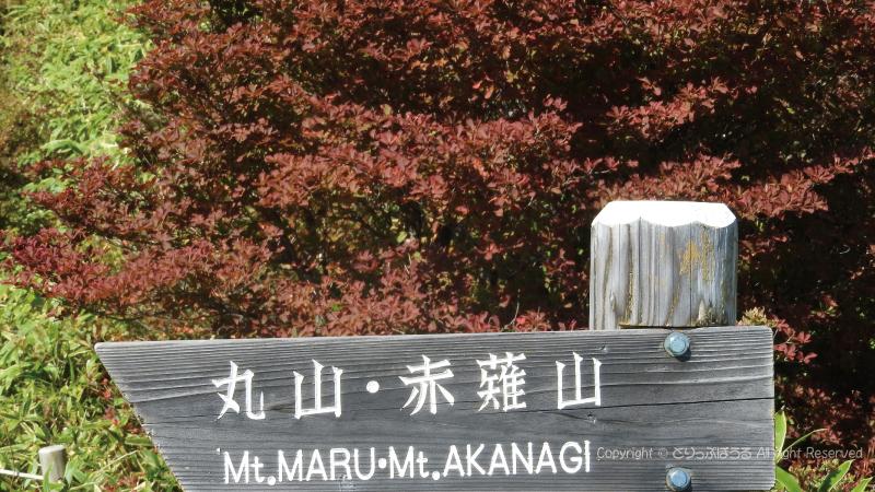 丸山・赤薙山登山道