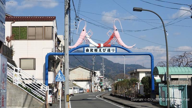 由比駅の桜えびのゲート