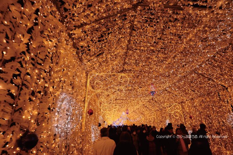 時の栖イルミネーション光のトンネル