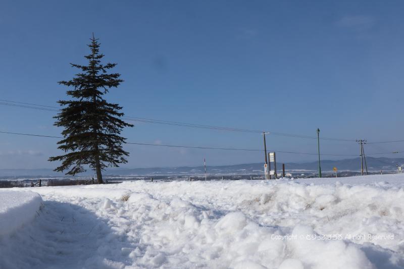 雪の朝日ヶ丘展望台