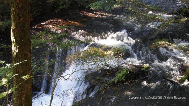 戦場ヶ原の小滝