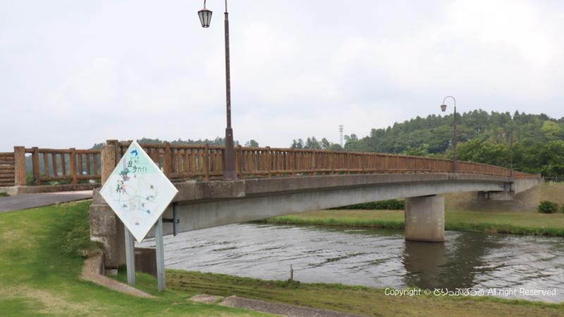 多古町あじさい公園のあじさい橋
