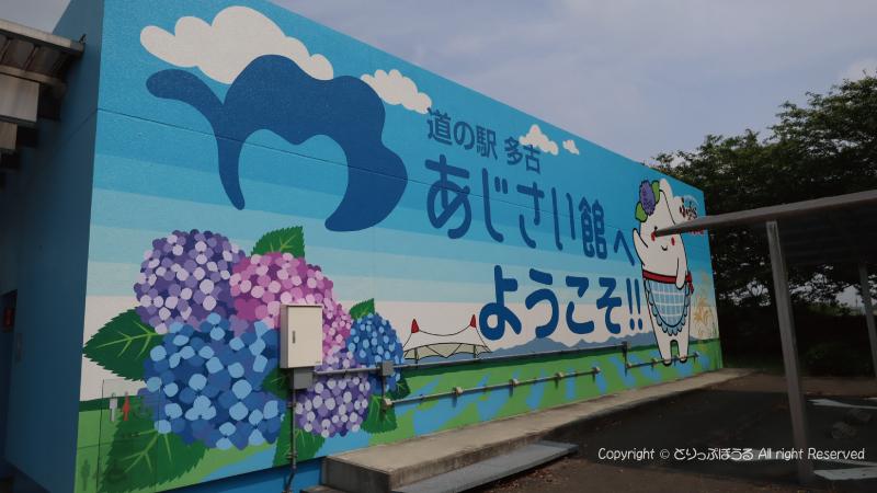 道の駅多古あじさい館