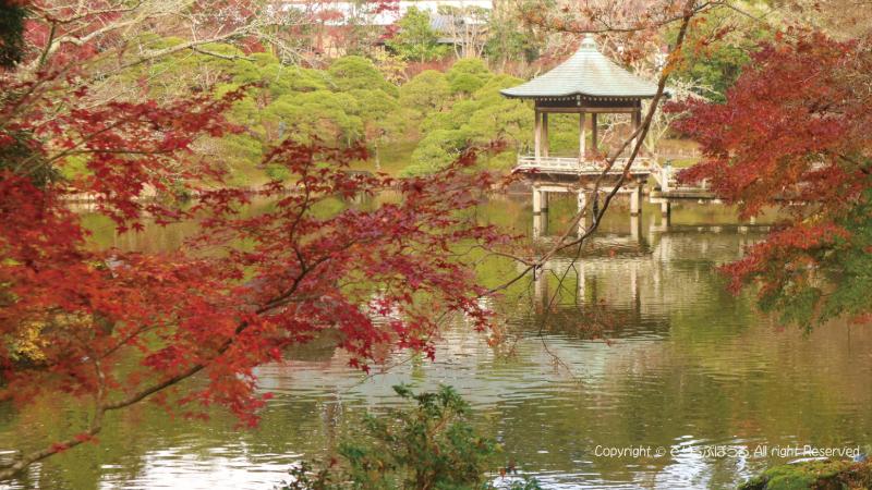 浮御堂と紅葉