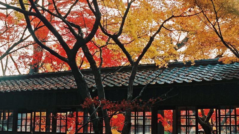 AC本土寺