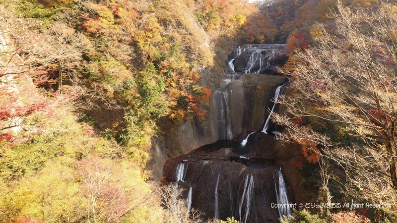 袋田の滝展望台から紅葉