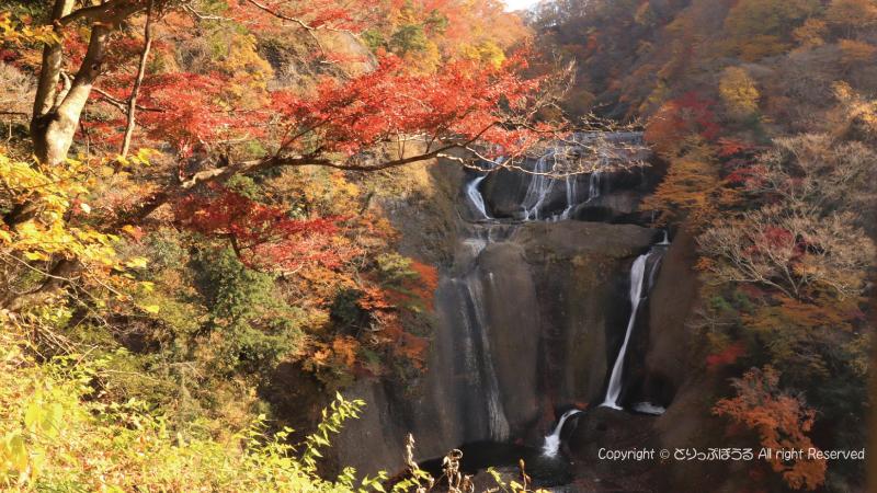 袋田の滝壺と紅葉2