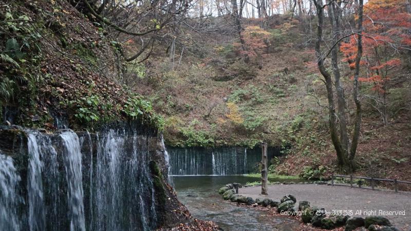 白糸の滝10月末紅葉