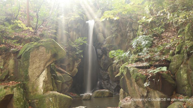 成田山公園雄飛の滝