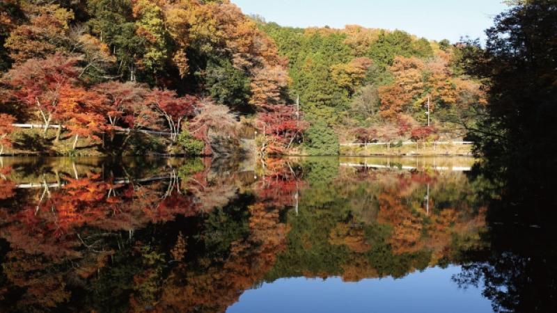 AC鎌北湖