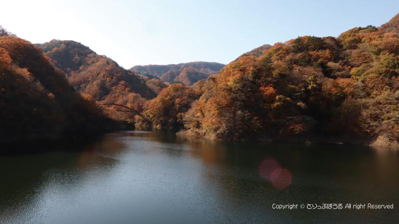 もみじ谷大吊橋から塩原ダム湖2