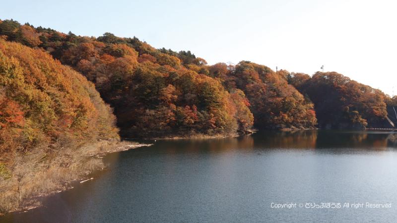 もみじ谷大吊橋から塩原ダム湖1