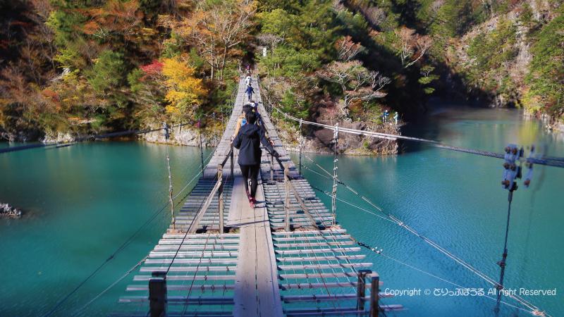 夢の吊橋の上