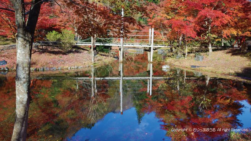 草履石公園紅葉2