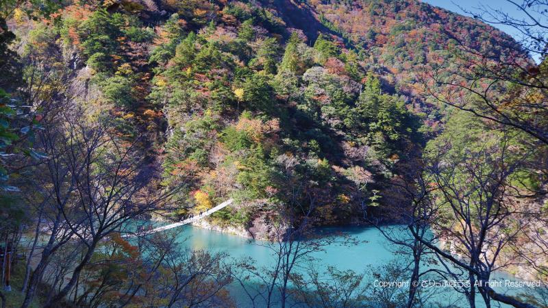 階段上からの紅葉とコバルトブルーの夢の吊橋