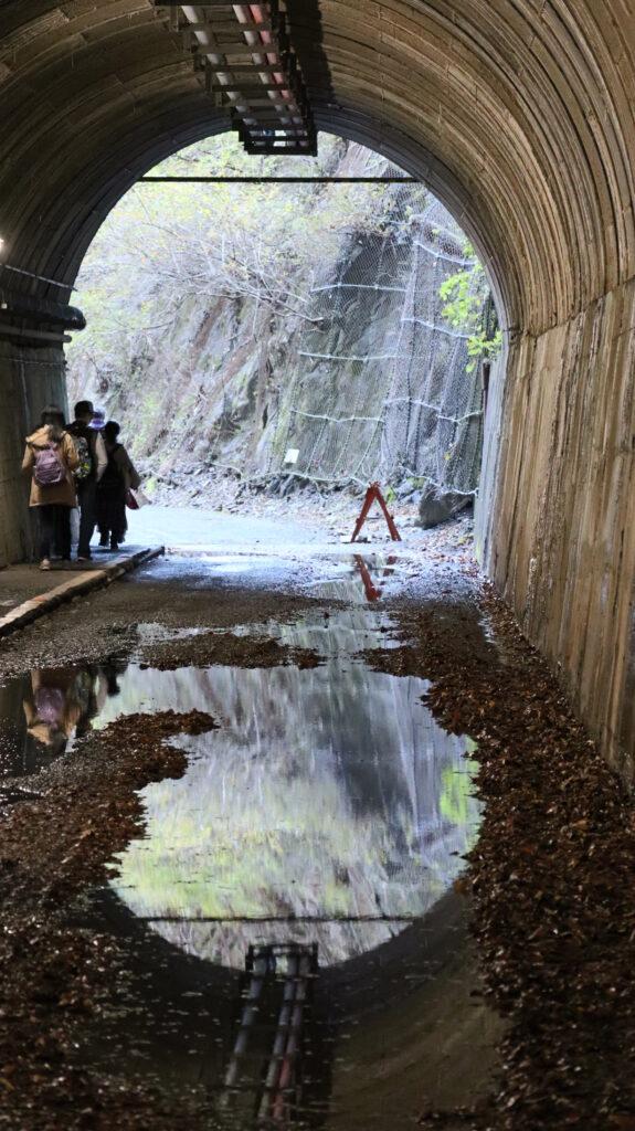 夢の吊橋のトンネル