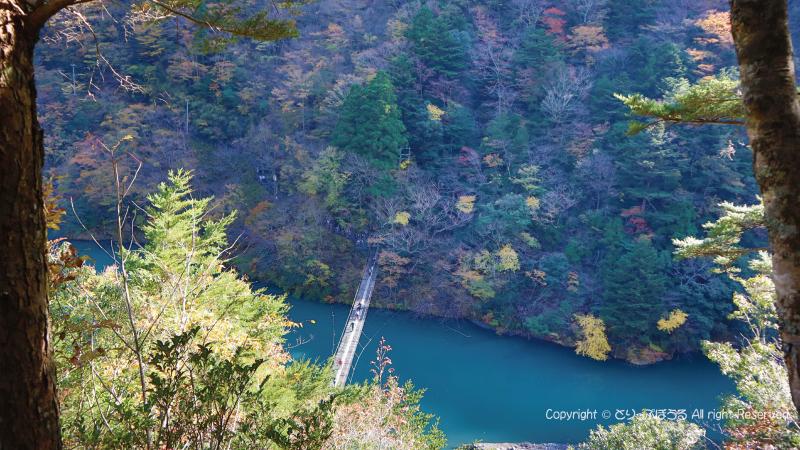 夢の吊橋ハイキングコース