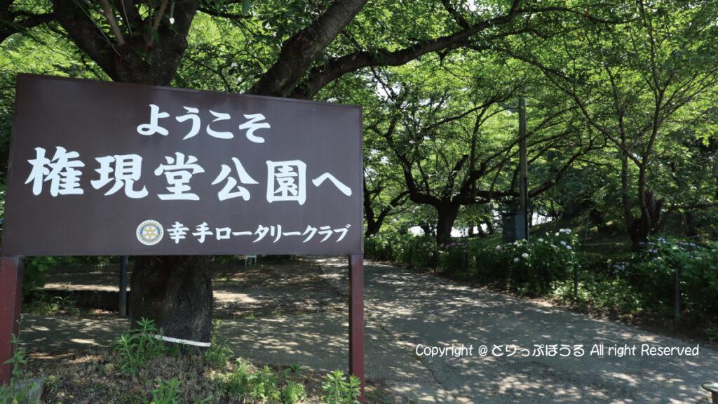権現堂公園あじさい入口