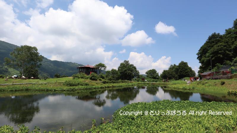 湯沢高原アルプの里池2