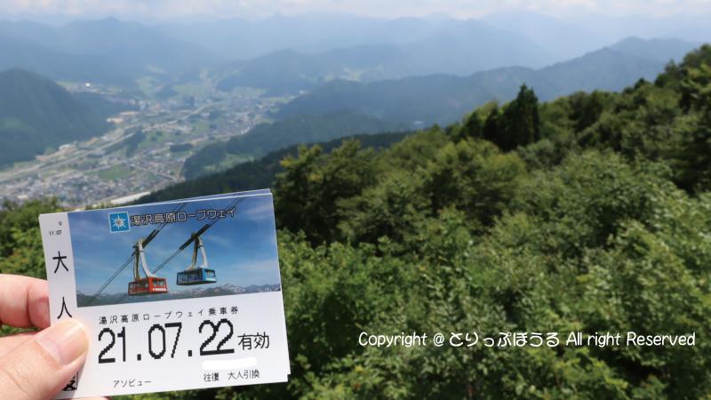 湯沢高原ロープウェイ乗車券