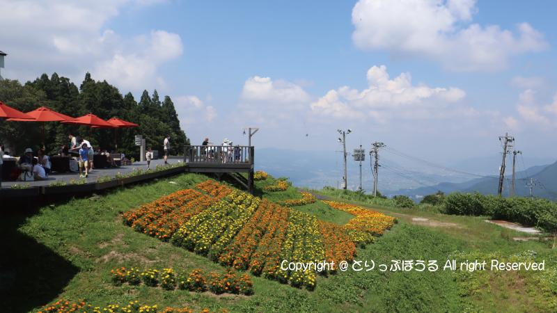 湯沢高原雲の上カフェテラス