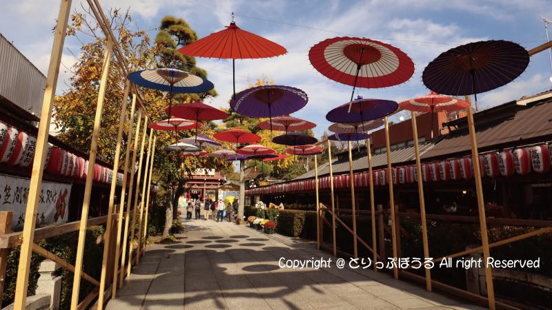 笠間稲荷神社参道と傘
